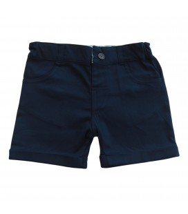Jason Navy Shorts