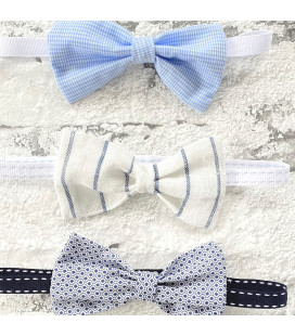 Striped Blue Bow Tie